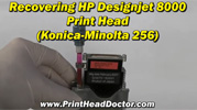 Mimaki, Roland, Mutoh, Epson DX4 print head cleaning with Print Head Doctor v2